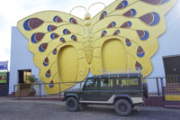 golden butterfly hotel