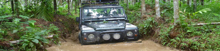 jungle en land rover près de taungoo